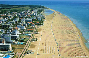 Fibula Travel - BIBIONE